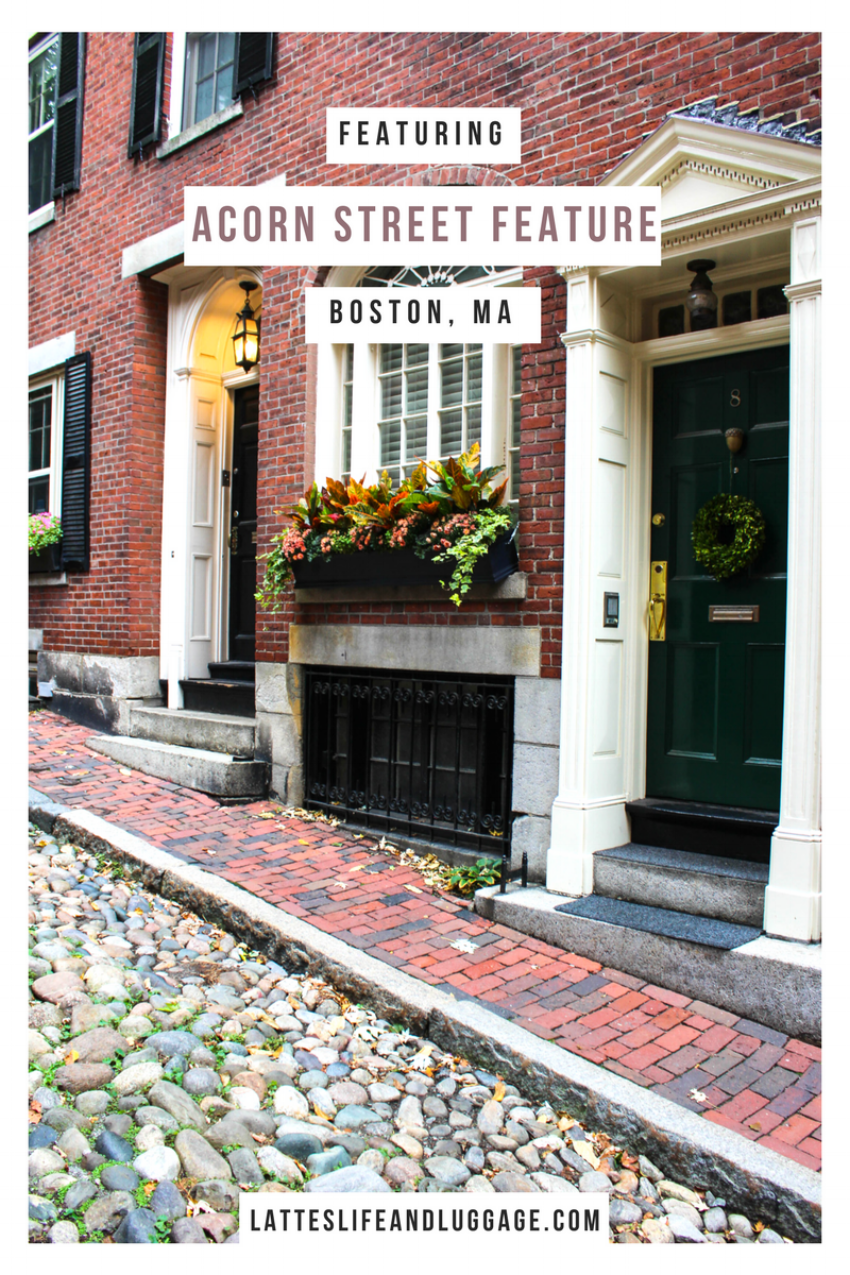 Acorn Street Feature.png