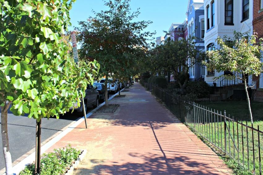 DC Neighborhood 2.jpg