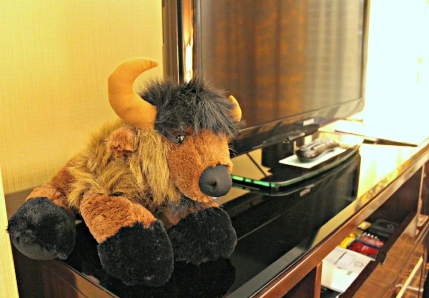 Hotel Monaco Denver 5.0.jpg