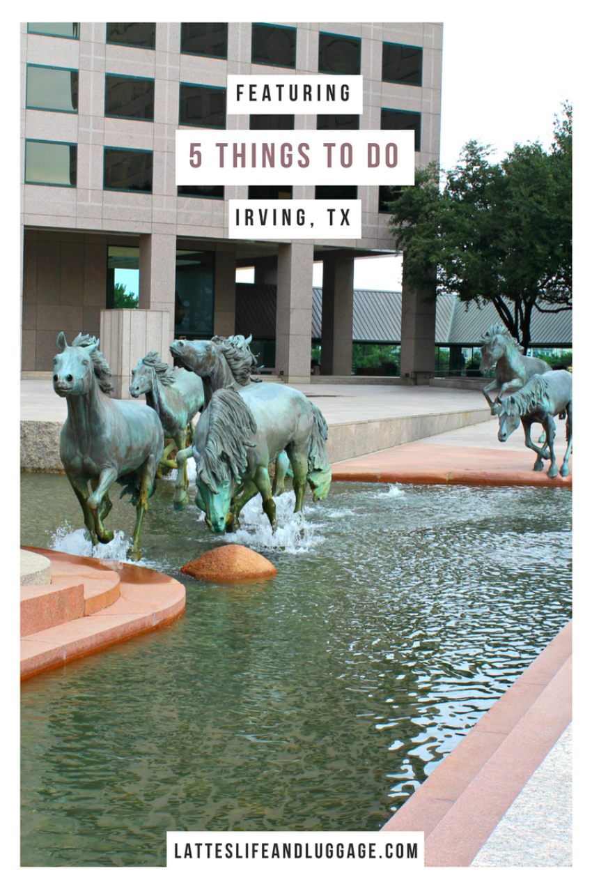 5 Things to Do In Irving.png