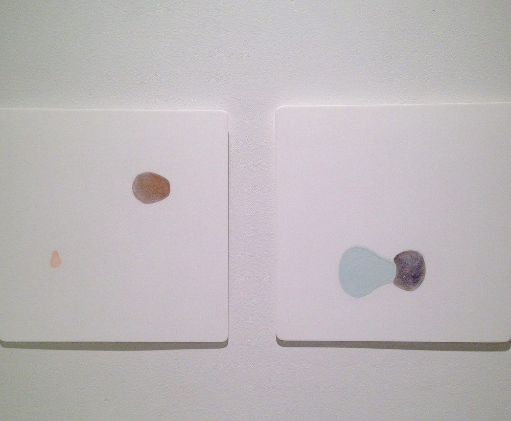 untitled diptych  paint and flocking material on plexiglass each unit: 12.5 x 12.5 x 1/4 in  2005