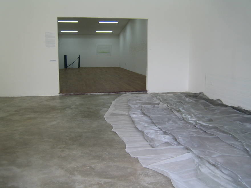 untitled site specifc floor installation (2)  metallic mesh  dimensions variable  2009