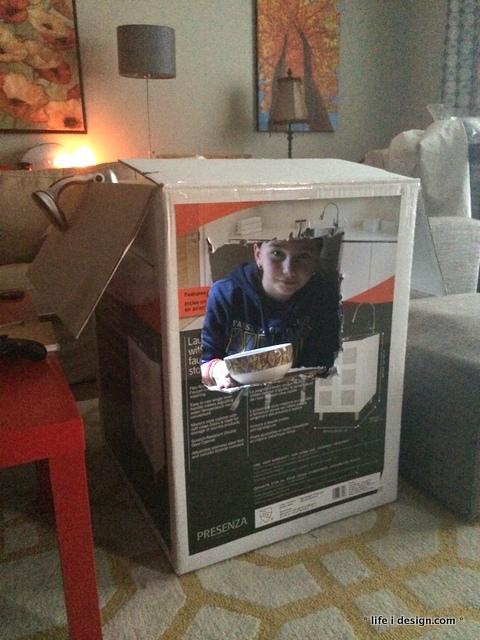 sab in a box-001