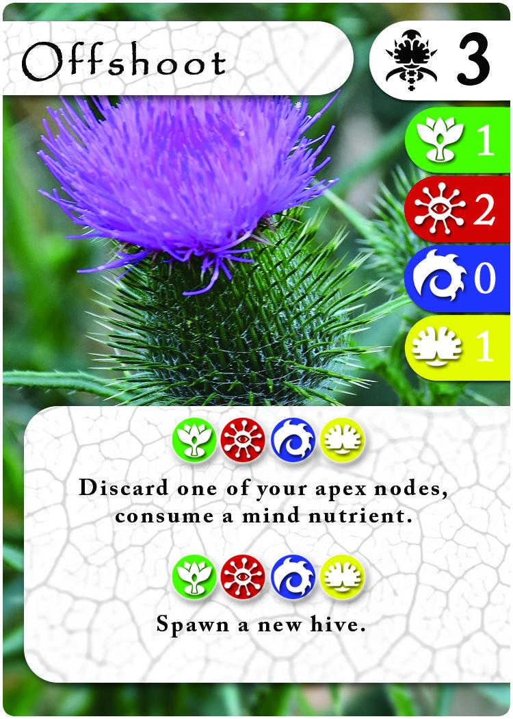 card3 copy.jpg