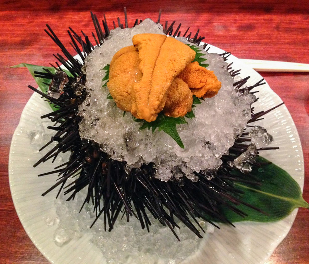 Sea urchin from Santa Barbara *