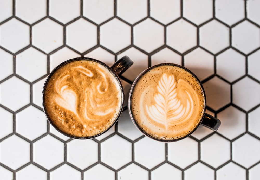 Provender Lattes - Kynder.jpg