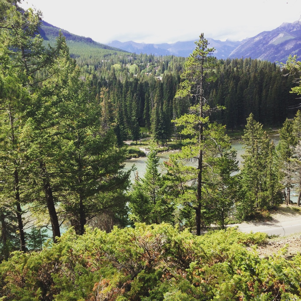 (Above) Taken by the author during the Peter Lougheed Leadership College Orientation in Banff, August 2015.