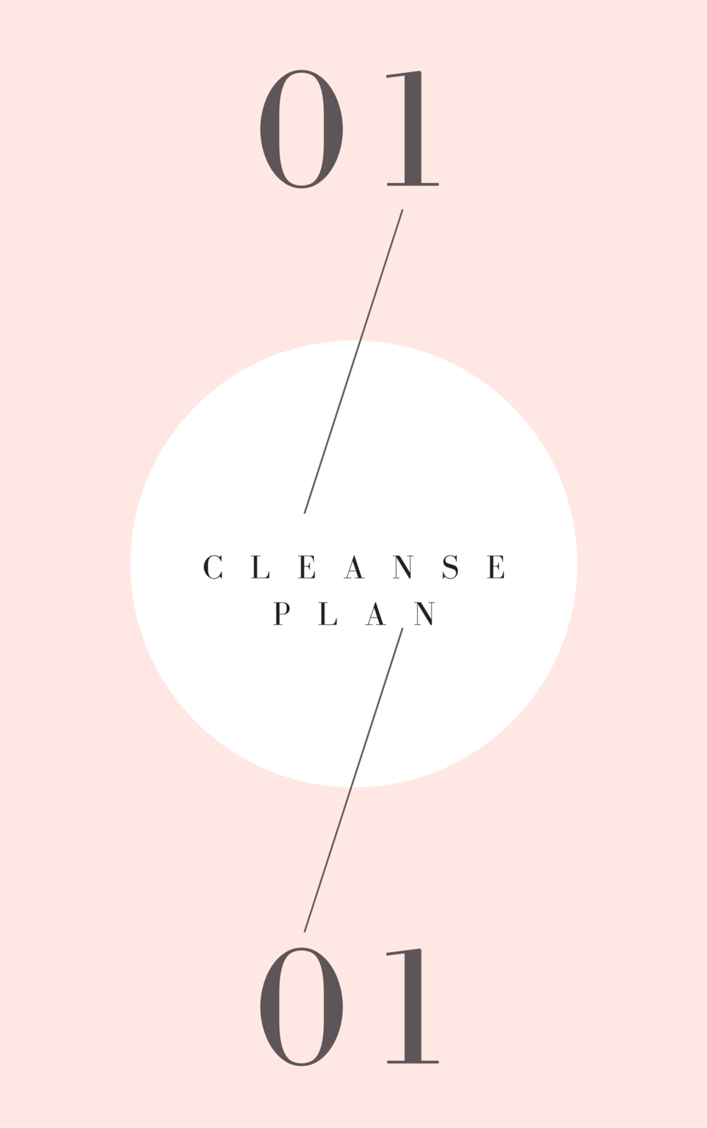 7 day cleanse plan page 10.png