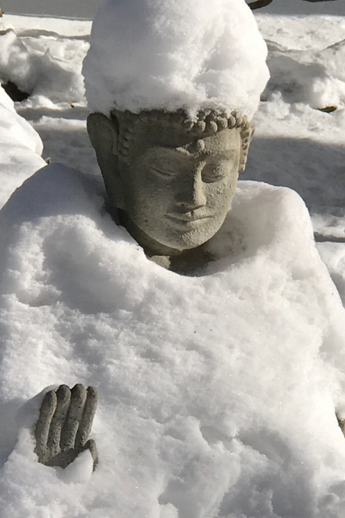closeup of Buddha.jpg