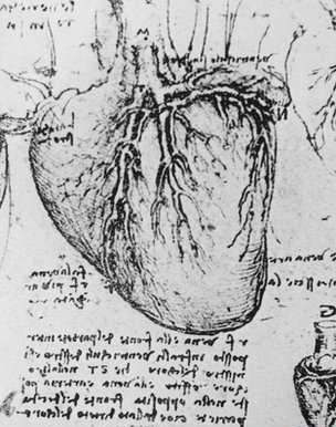 Heart sketch showing Da Vinci's backward writing.