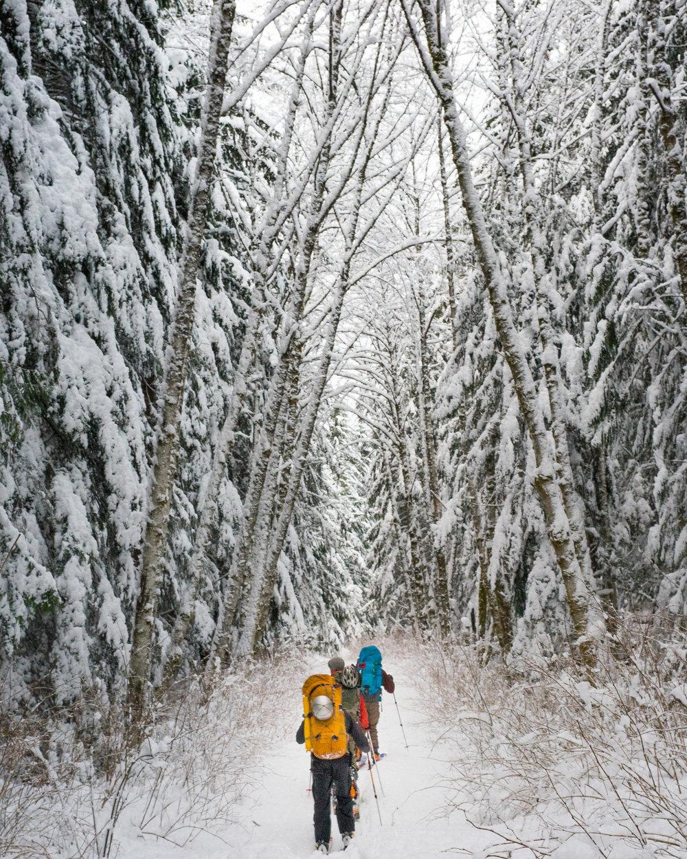 Ski Out-9904.jpg