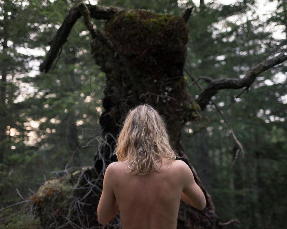 Bareback Big Stump 2-1034.jpg