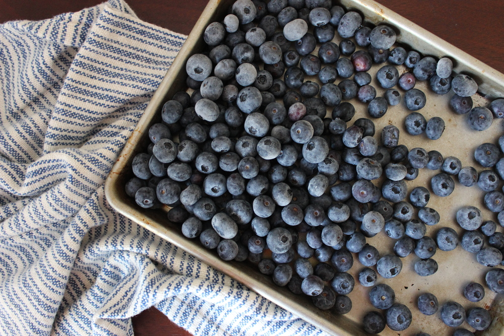 How to freeze blueberries at home for a zero waste, plastic-free kitchen | Litterless