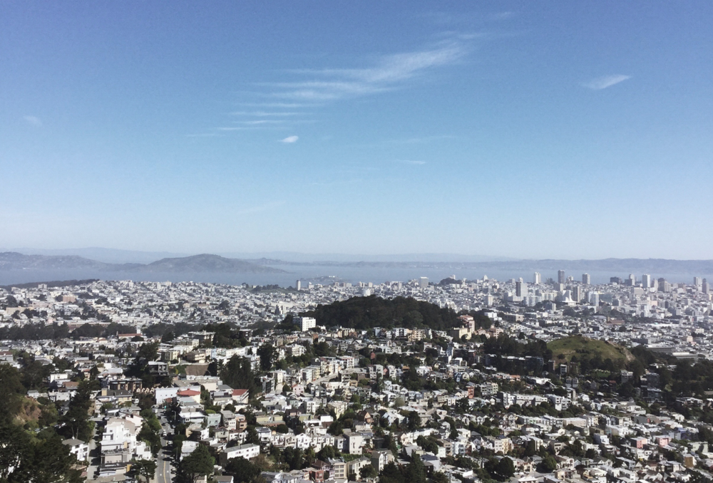 San Fransisco | Litterless