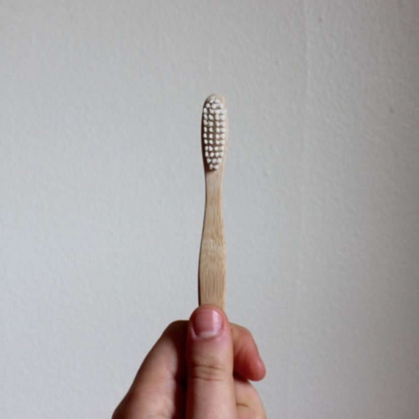 Brush with Bamboo compostable bamboo toothbrush | Litterless