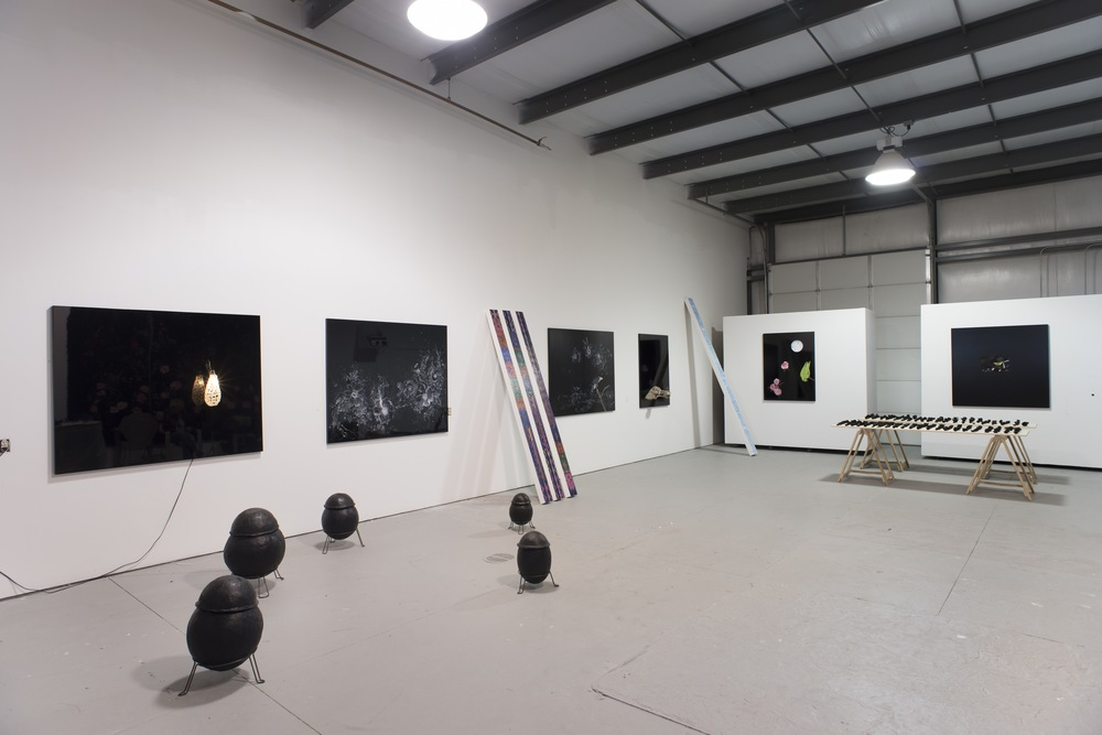 A Novel, Chapter I, Installation View From left to right:  Funerary Urns, 2013-2014. Insulation material, oil stick. Various sizes. // Self-Portrait with Papaya, 2013, dibond, car paint, cable, light bulb and fresh water pearls, 4 x 6 feet // Mimesis, 2013-2014, enalmel on dibond. 4 x 6 feet // Leaning Chumbes, 2014. Acrylic on canvas on wood. 85 x 5 x 3 inches // El Damnificado, 2014, enamel on dibond, 4 x 6 feet // Close Enough, 2014, enamel on dibond, driftwood and carved wood bird, 4 x 2 feet // Leaning Chumbe, 2014, acrylic on canvas on wood. 96 x 6 x 3 inches // Loro con Luna, 2013-2014, collage on dibond, 2 x 3 feet. // Crisóles, 2014. paper clay, oil stick and wood, objects of varying sizes on 4 x 8 foot boards // Do You Want a Taco?  2013-2014, collage on dibond, 2 x 3 feet