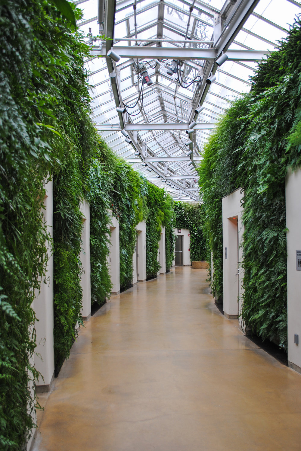 "When you go to Longwood and you have to ""go"", you'll find the restrooms are nestled amongst the largest green wall in North America."