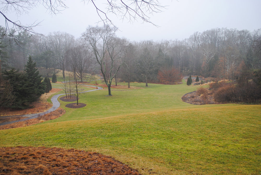 The big takeaway for me from the visit was a reminder of the importance of incorporating strong lines into garden design and then maintaining them.  From this overlook view, manicured lines delineate areas, and different colors of the detritus enhance the contrast next to the torpor turf.