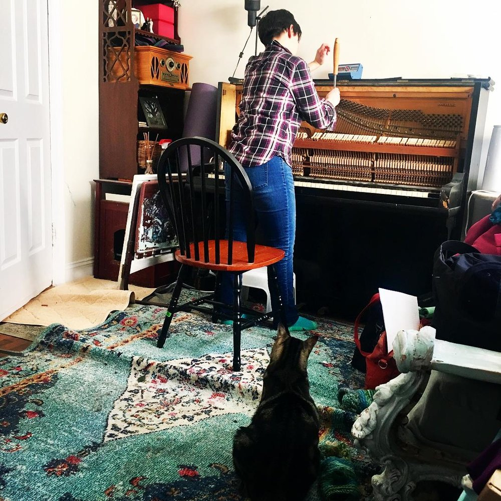 Piano tuning, while observed by a cat!  Photo by E. Driscoll