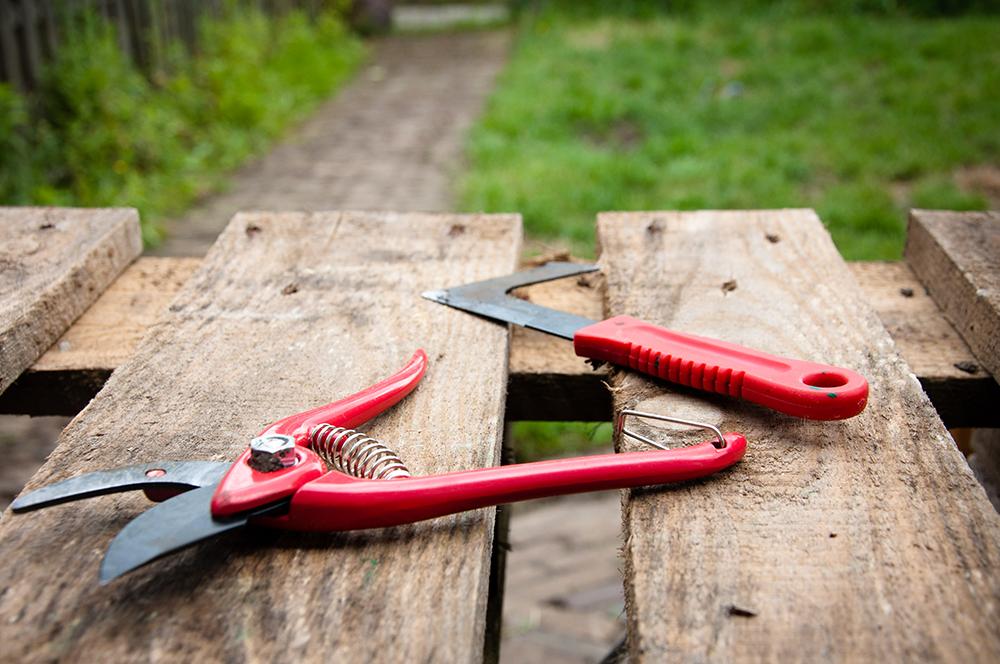 stockvault-gardening-tools132194.png