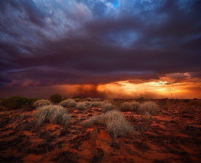 Dust storm meets rain storm. #innamincka #outback #southaustralia #australia #strzelecki #desert