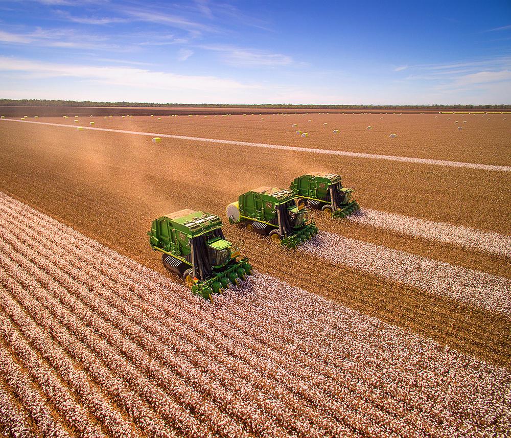 Three John Deere cotton pickers working as a team near Warren, NSW.