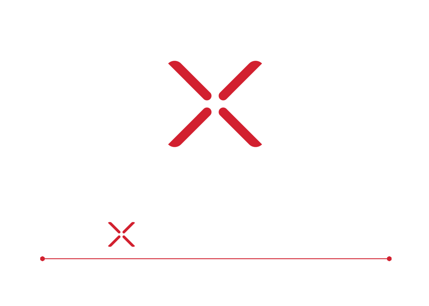 The eXperience Concept