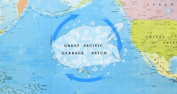 Pacific-4.png
