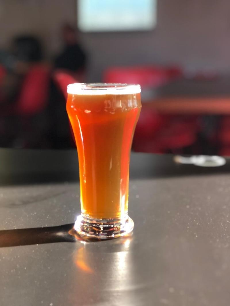 red ale steady brew.jpg