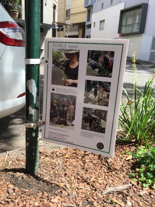 • We will see urban farming in Chippendale's road gardens