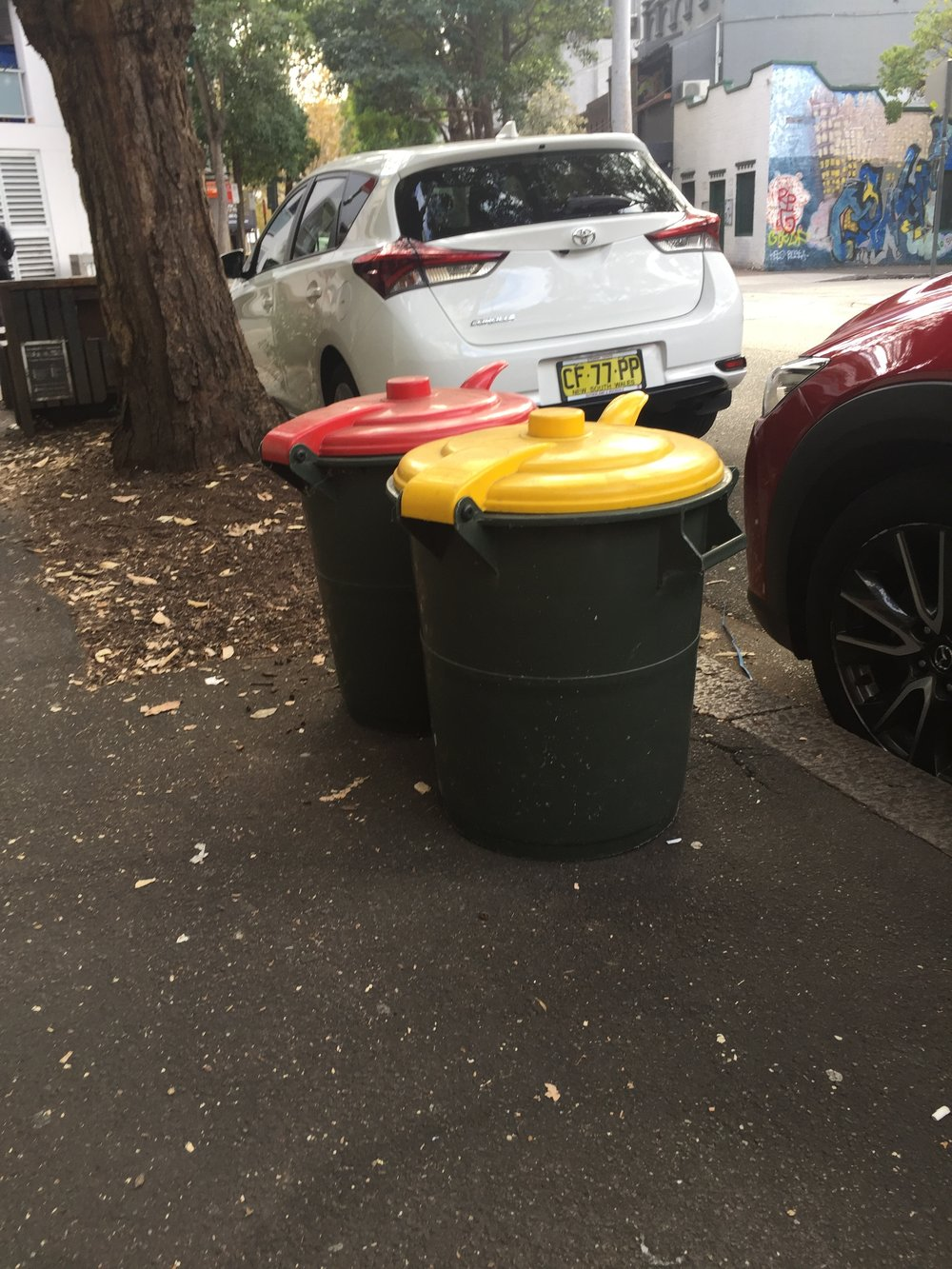 • Small, 50 Litre bins on a Chippendale street