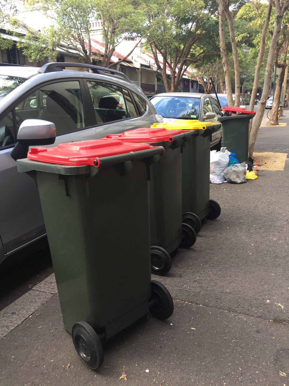 • Larger, 120 litre bins and, in the distance, an over-flowing bin in Chippendale street