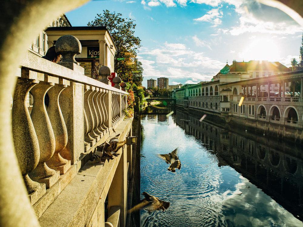 Fotoreportage - Ljubljana