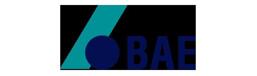 Copy of Bae batteries