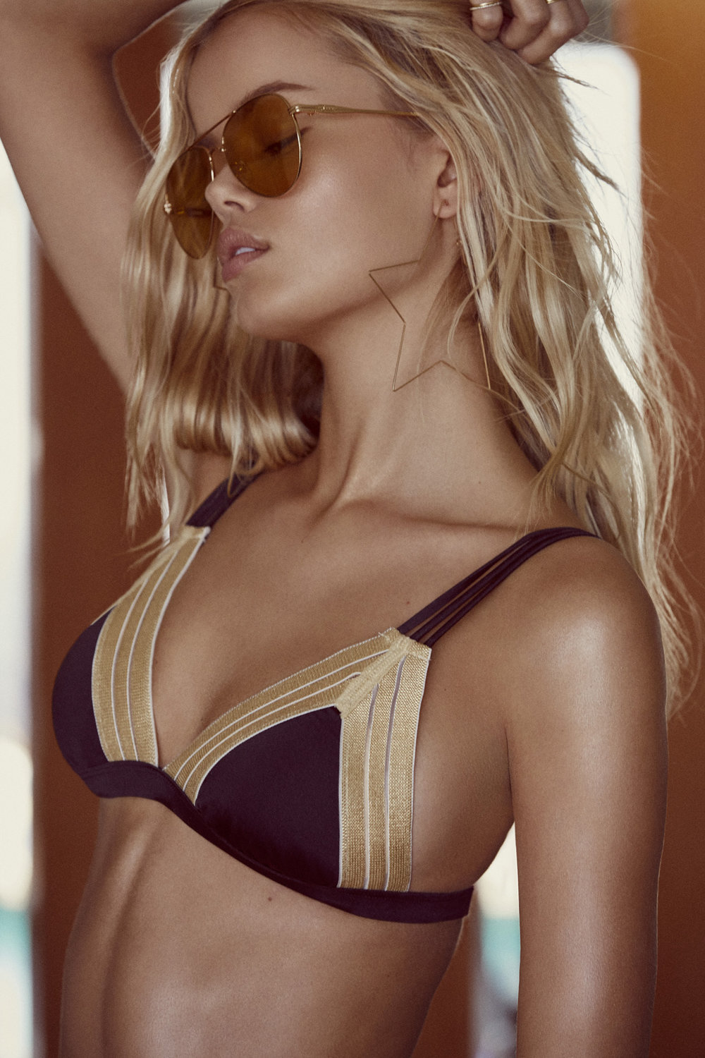 Beach Bunny Sheer Addiction Black & Gold Triangle Top