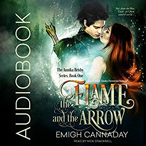 flame arrow audibook cover.jpg