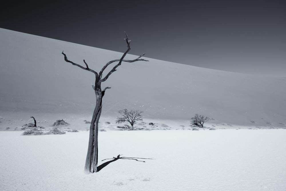 Hiddenvlei, Namibie