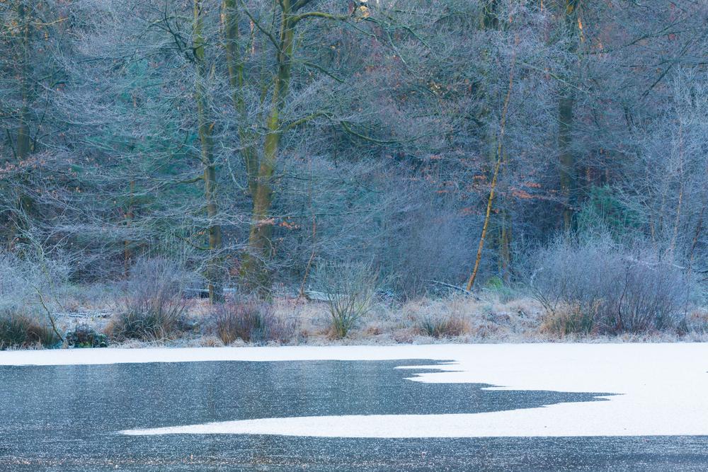 Sneeuw, ijs en rijp