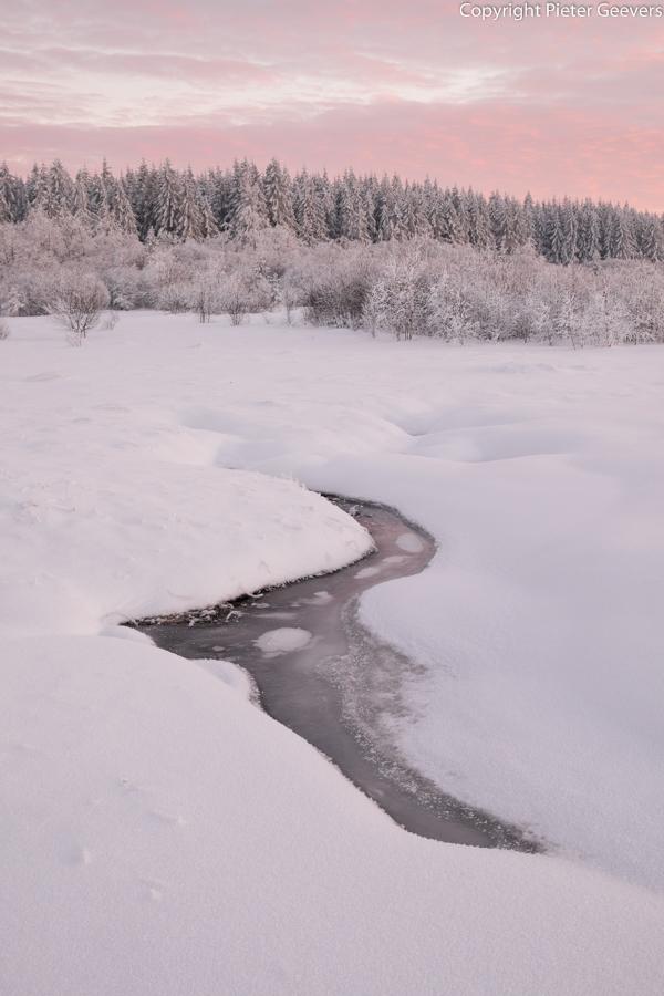 Frozen stream #2, Ardennes