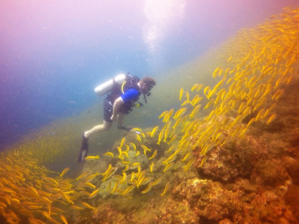 Fun Diving - Beachfront Divers