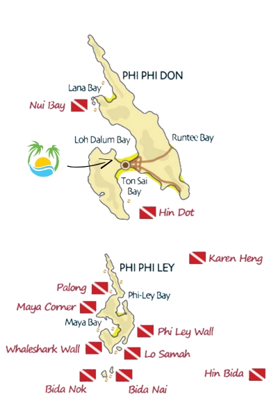 Phi Phi Dive Sites - Using both small traditional Thai longtail boats and larger purpose built diving boats we are able to take you to all of the dive sites within the Phi Phi Marine Park.Our local dive site Nui Bay is simply stunning, providing a mixture of gentle slopes as well as a vertical wall, and boasts a fabulous array of beautiful corals and schools of fish.Another favourite of ours is Palong on the western side of Phi Phi Ley.Black-tip reef sharks and turtles can often be found here in the shallows, as well as some exciting swim-thru's within the epic limestone coastline which makes these dive sites so unique.Bida Nok and Bida Nai are two of the top dive sites in the Andaman Sea, and both offer a mixture of hard and soft corals as well as many species of fish often seen in large schools, as well as the chance to see sharks, turtles, or if you are very lucky even a whaleshark.