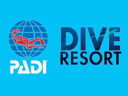 PADI Dive Restort - Beachfront Divers - Koh Phi Phi, Thailand