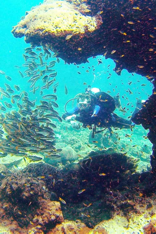 Fun Diving- Phi Phi Thailand - Beachfront Divers.jpg