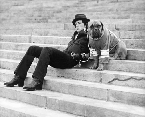 Sylvester Stallone With Dog In 'Rocky'