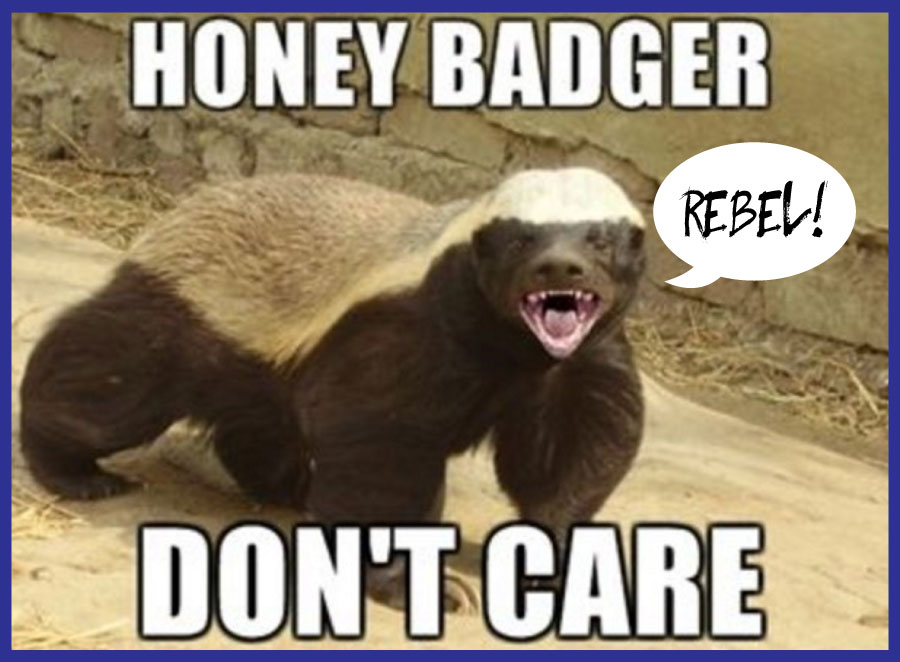 Click here  to view 'Honey Badger Don't Care' .