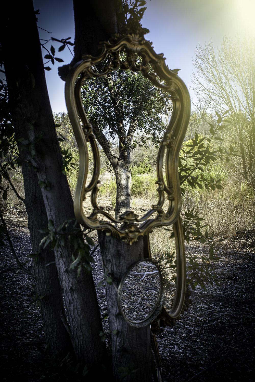 Mirrors (1 of 1).jpg