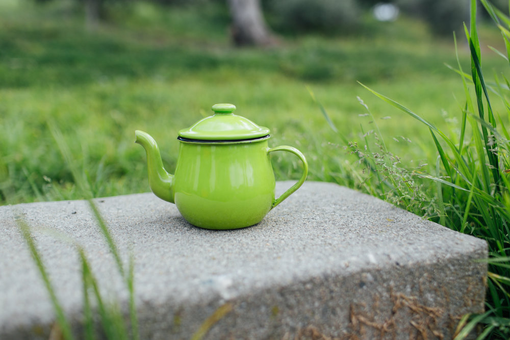 Anca Greenery Enamel Tea Pot