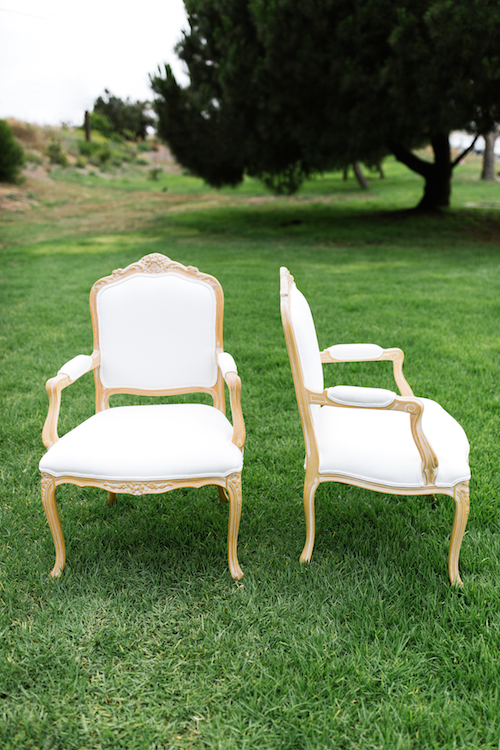 Anouk French Arm Chair 3 - Provenance Vintage Rentals Los Angeles Vintage Rentals Near Me Party Rentals Near Me Vintage Furniture Rentals VIntage Wedding Decor Lounge Furniture Rentals Near Me Lounge Furniture Rentals Los Angeles.png