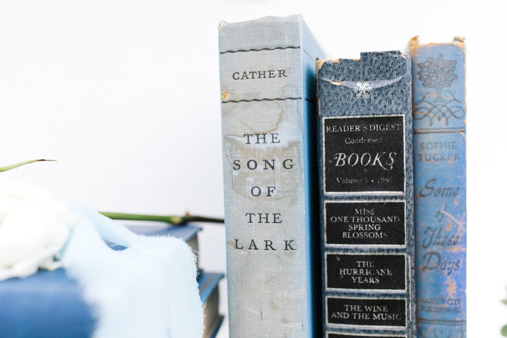 Kathleen Blue Decortive Books, Set of Three 6 - Provenance Vintage Rentals Los Angeles Vintage Rentrals Near Me Vintage Book Rentals Vintage Prop Rentals Prop Styling Party Rentals Near Me Los Angeles.jpg