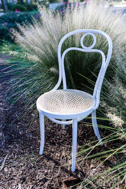 Palisades White Bentwood Chair Provenance Rentals